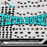 Peace Love Productions - Filter House (WAV) - сэмплы Hard Disco, Funk House, French Filter House