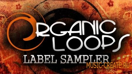 Organic Loops - Label Sampler (WAV) - сэмплы Rock, Dubstep, Guitars, Vocals, Strings