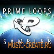 Prime Loops - Label Sampler (WAV) - сэмплы Drum and Bass, Electro, Dubstep, Electro House, Garage