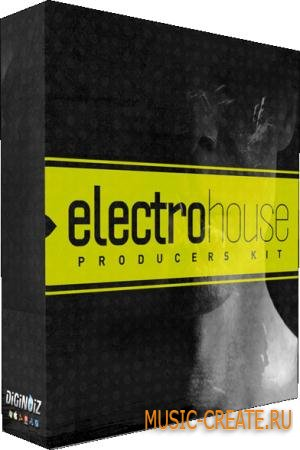 Diginoiz - Electro House Producers'Kit (WAV AIFF) - сэмплы Electro House