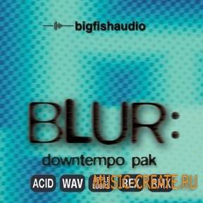 Big Fish Audio - Blur Downtempo Pak (WAV REX AiFF RMX) - сэмплы Downtempo