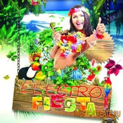 Big Fish Audio - Electro Fiesta (WAV/AiFF/MiDi/REX) - сэмплы Electro Latin, Electro House
