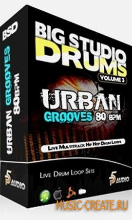 P5 Audio - Big Studio Drums Vol 3: Urban Grooves 80 bpm (MULTiFORMAT) - сэмплы Urban