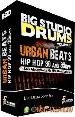 P5 Audio - Big Studio Drums: Urban Beats Hip Hop 90-99 Bpm (MULTiFORMAT) - сэмплы Hip Hop