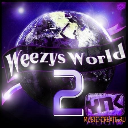 YnK Audio - Weezy's World 2 (WAV MiDi FLP) - сэмплы Dirty South