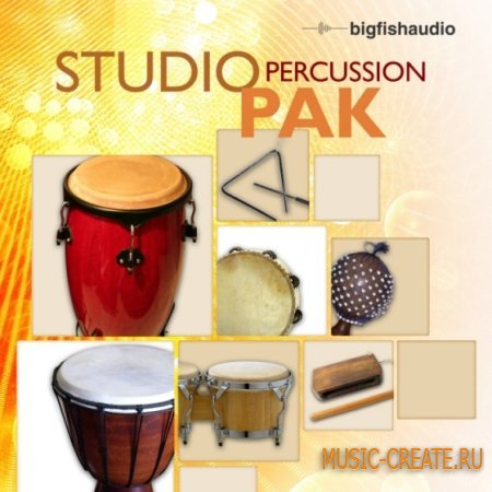 Big Fish Audio - Studio Percussion Pak (MULTiFORMAT) - сэмплы перкуссий