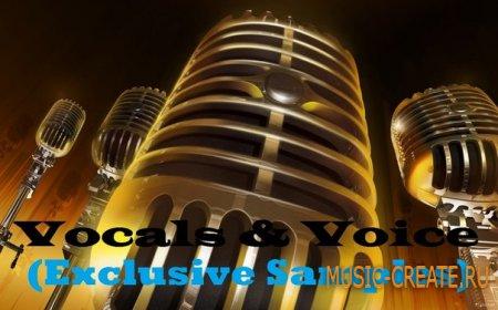 Vocals & Voice - Exclusive Samples (MP3 WAV) - сэмплы вокала и акапеллы