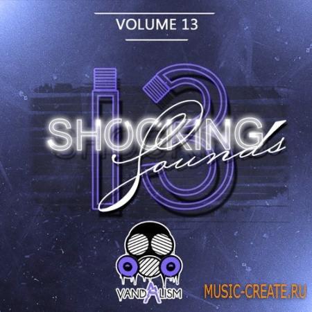 Vandalism - Shocking Sounds 13 (Sylenth presets)