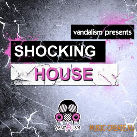 Vandalism - Shocking House (Sylenth presets)