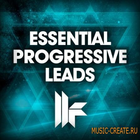 Toolroom records ultimate drum loops wav for Essential house music