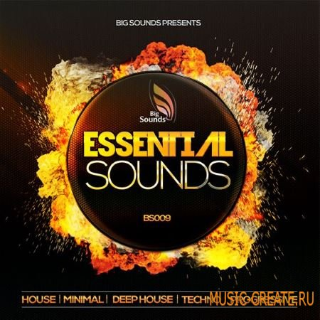 Big Sounds - Essential Sounds (WAV MiDi) - сэмплы House, Deep House, Minimal, Techno, Progressive