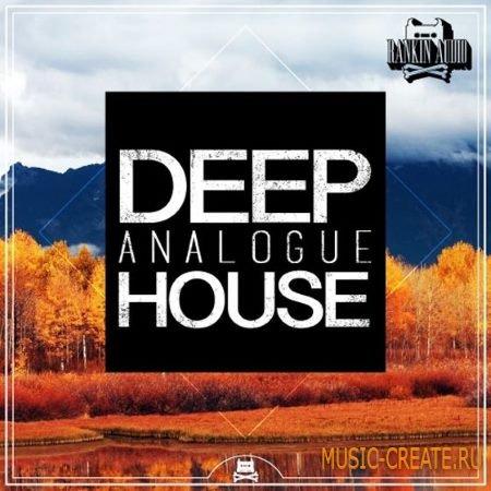 Rankin Audio - Deep Analogue House (WAV MiDi) - сэмплы Deep House