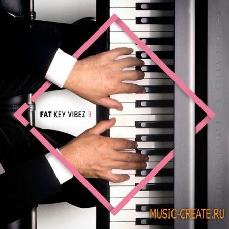 Diginoiz - Fat Key Vibez 3 (ACiD WAV MiDi AiFF) - сэмплы и мелодии клавишных