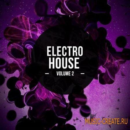 8DM - Electro House Vol.2 (WAV) - сэмплы Electro House