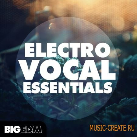 Big EDM - Electro Vocal Essentials (WAV MiDi FLPs TUTORiAL) - вокальные сэмплы