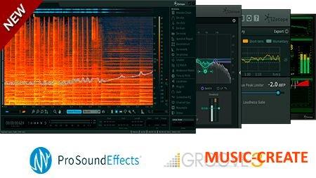 iZotope - RX Post Production Suite 1.00 patched WiN X86 X64 (NO iLOK) - плагины для восстановления, редактирования  аудио и миксинга