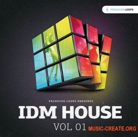 Producer Loops - IDM House Vol 1 (MULTiFORMAT) - сэмплы House