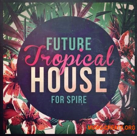 Mainroom Warehouse - Future Tropical House (REVEAL SOUND SPiRE)
