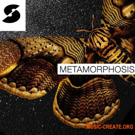 Samplephonics - Metamorphosis (MULTiFORMAT) - сэмплы DnB