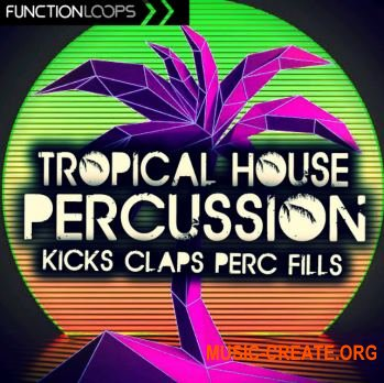 Function Loops - Tropical House Percussion (WAV) - сэмплы Tropical House