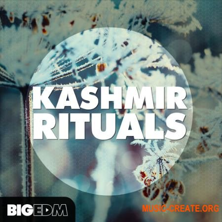 Big EDM Kashmir Rituals (WAV Sylenth1 presets) - сэмплы Dance, EDM