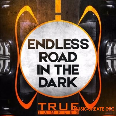 True Samples Endless Road In The Dark (WAV MiDi SPiRE) - сэмплы Techno