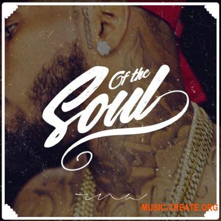 SAMI THE PRODUCER Of The Soul (WAV) - сэмплы RnB, Soul