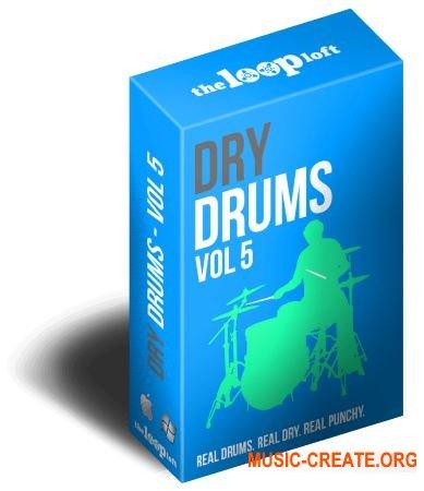 The Loop Loft Dry Drums Vol 5 (MULTiFORMAT) - сэмплы ударных