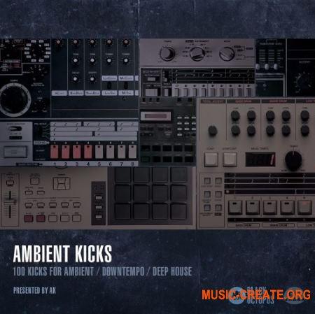Black Octopus Sound Ambient Kicks (WAV) - сэмплы бас-барабанов