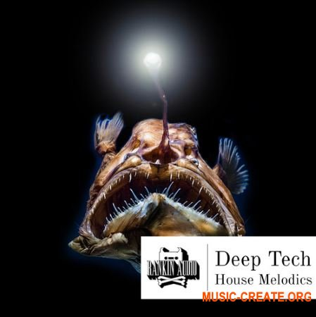 Rankin Audio Deep Tech House Melodics (WAV MiDi) - сэмплы Deep House, Tech House