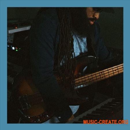 Soul Surplus 710 Bass Pack (WAV) - сэмплы баса