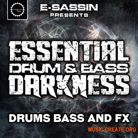 Industrial Strength E-Sassin Essential Drum and Bass Darkness (WAV) - сэмплы DnB