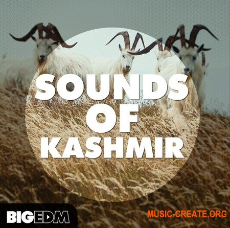 Big EDM Sounds Of Kashmir