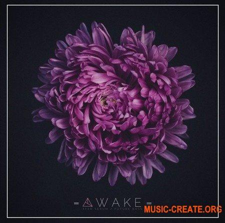 Unmute Awake (SERUM PRESETS) - звуки Future Bass, Future Pop