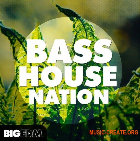 Big EDM Bass House Nation