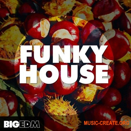 Big EDM Funky House