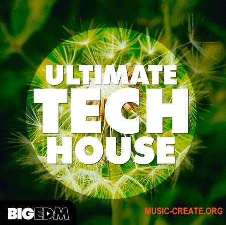 Big EDM Ultimate Tech House (WAV MiDi SYLENTH1 MASSiVE) - сэмплы Tech House, Techno