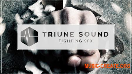 Triune Store Triune Sound Fighting SFX (WAV) - сэмплы звуковых эффектов