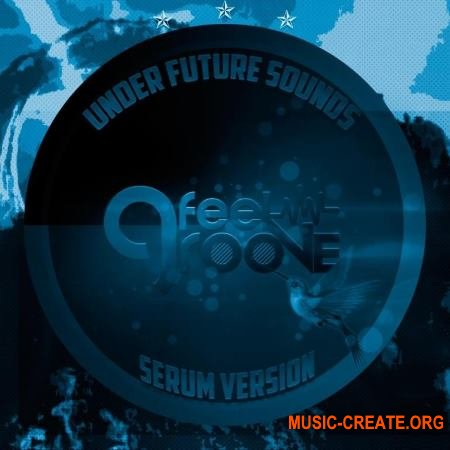 Under Future Sounds Feel Groove (Serum Presets FXP)