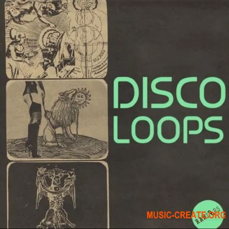 Raw Loops Disco Loops (WAV) - сэмплы Disco