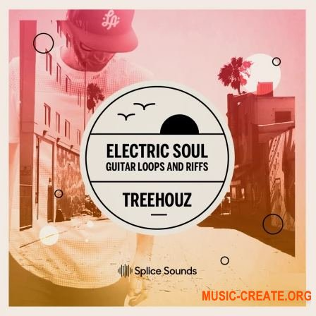 Electric Soul - Guitar Loops and Riffs by Treehouz (WAV) - сэмплы гитары