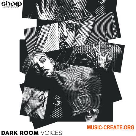 Function Loops Dark Room Voices (WAV) - вокальные сэмплы