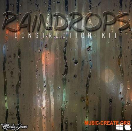 The Drum Bank Raindrops (WAV MiDi) - сэмплы RnB, Soul