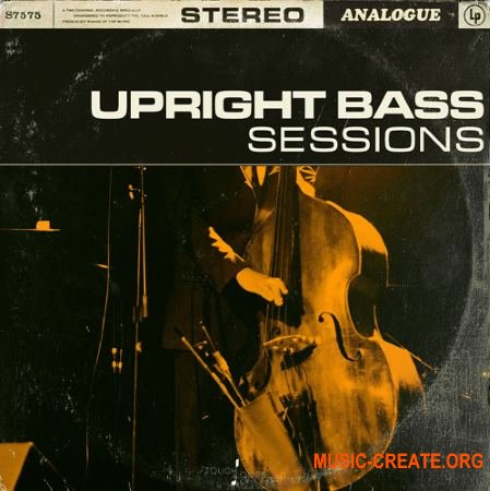 Touch Loops Upright Bass Sessions (WAV) - сэмплы контрабаса