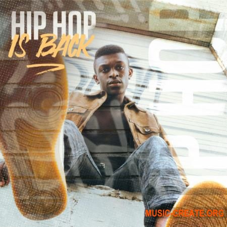 Diginoiz Hip Hop Is Back (WAV) - сэмплы Hip Hop