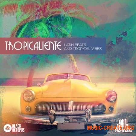 Black Octopus Sound Tropicaliente (WAV) - сэмплы Tropical House, Tech House