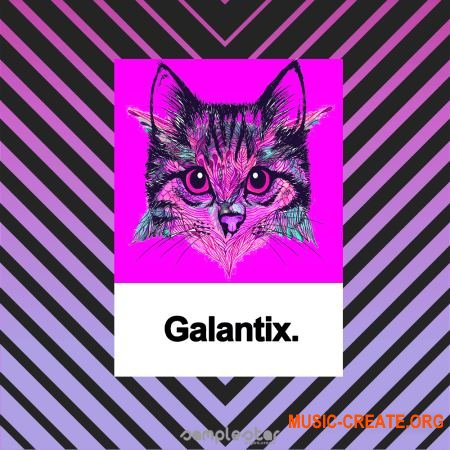 Samplestar Galantix (WAV MiDi) - сэмплы EDM, Future Soul Pop