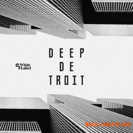 Sample Magic Deep Detroit  (MULTiFORMAT) - сэмплы Techno, Deep House, Deep Detroit