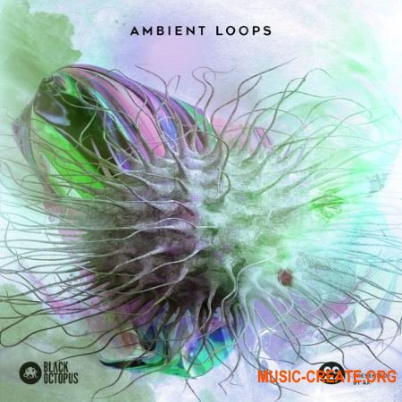 Black Octopus Sound AK: Ambient Loops (WAV) - сэмплы Ambient