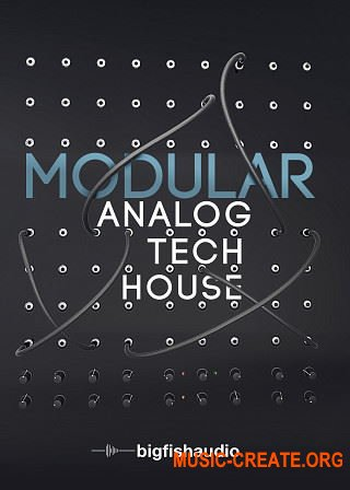 Big Fish Audio Modular: Analog Tech House (KONTAKT) - библиотека Tech House